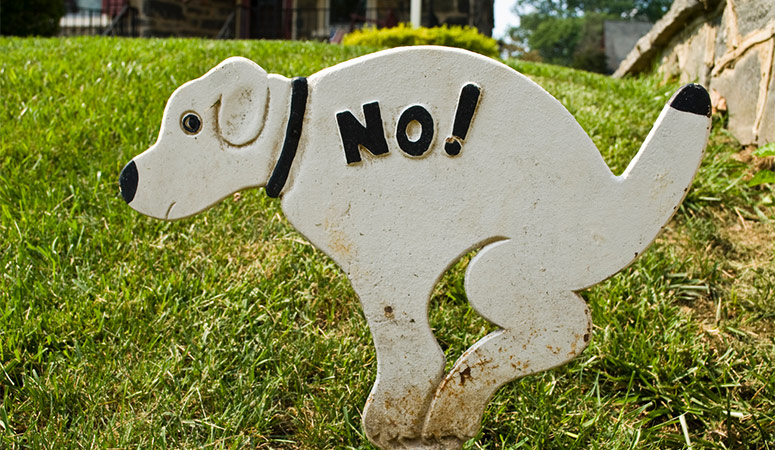 Sign for No Dog Pooping