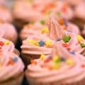 Best Way to Freeze Cupcakes