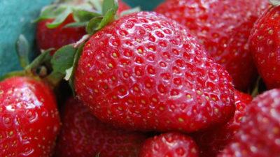 Best Way to Freeze Strawberries