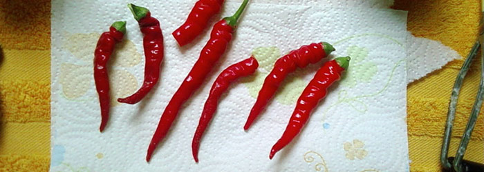 Sprinkle Cayenne Peppers on the Area