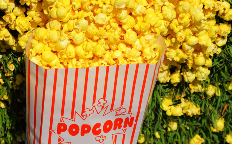 A Bag of Popcorn on the Grass