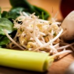 How Do You Freeze Bean Sprouts?