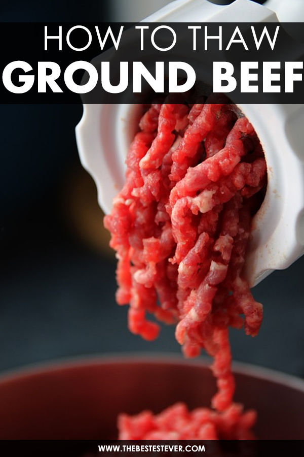 Ground Beef coming out a meat grinder