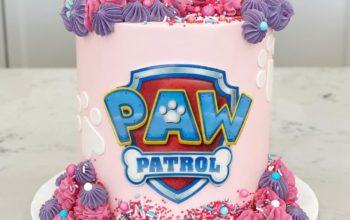 15 Paw Patrol Cake Ideas