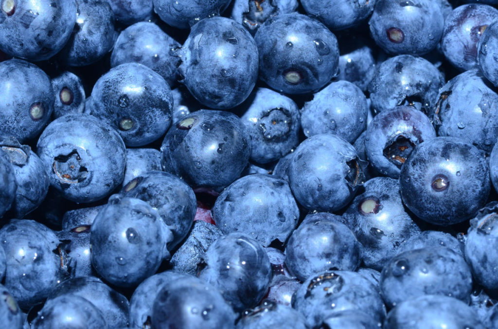 Close up of a bunch of blueberries