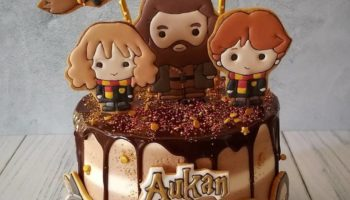 15 Amazingly Magical Harry Potter Cake Ideas & Designs