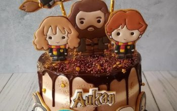 15 Amazingly Magical Harry Potter Cake Ideas & Designs