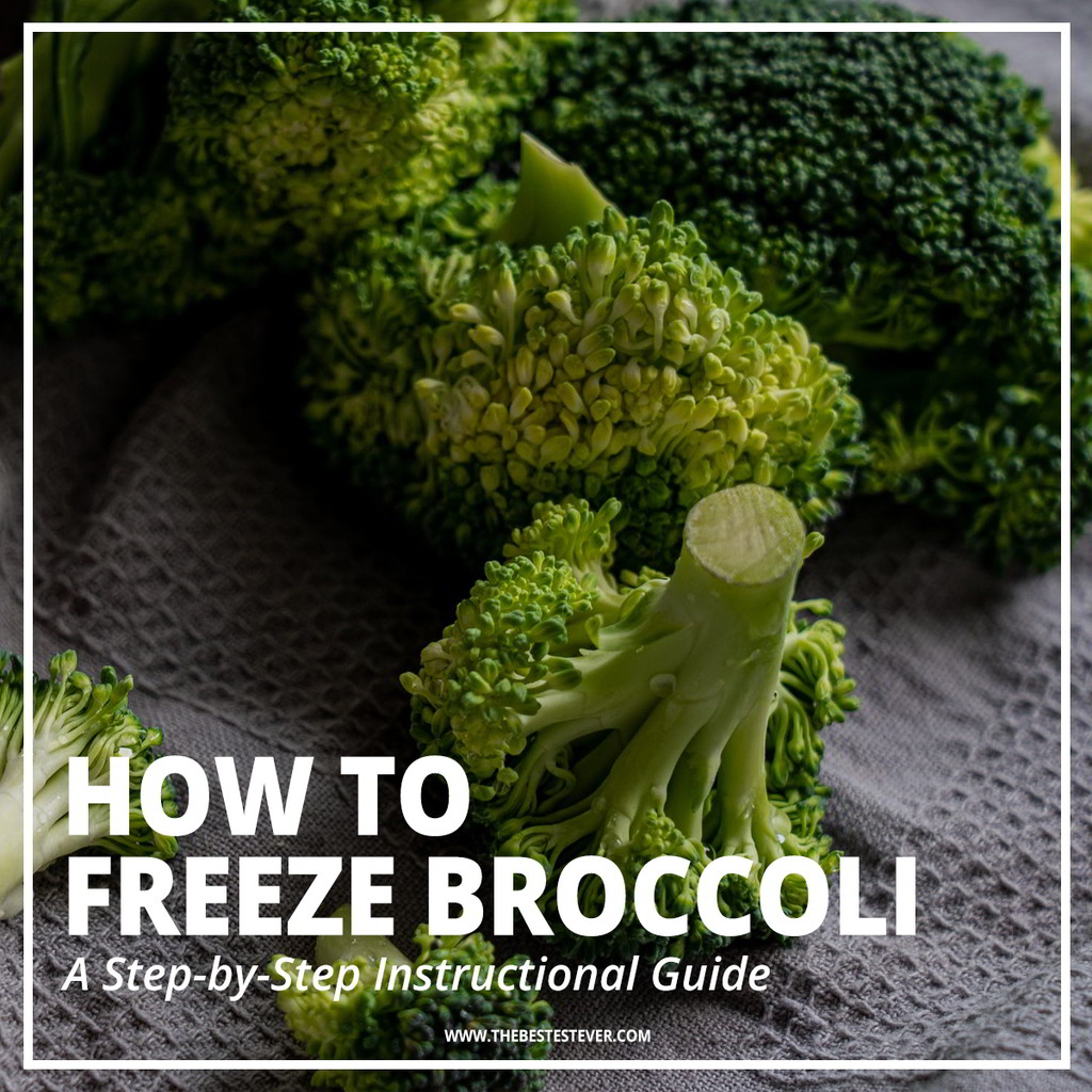 How to Freeze Broccoli: Step-by-Step Guide