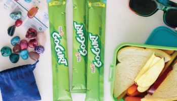 Can You Freeze Gogurt? Everything You Need to Know
