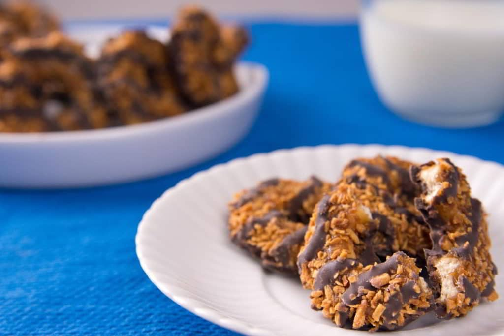 How to Freeze Girl Scout Cookies (A Step-by-Step) Guide