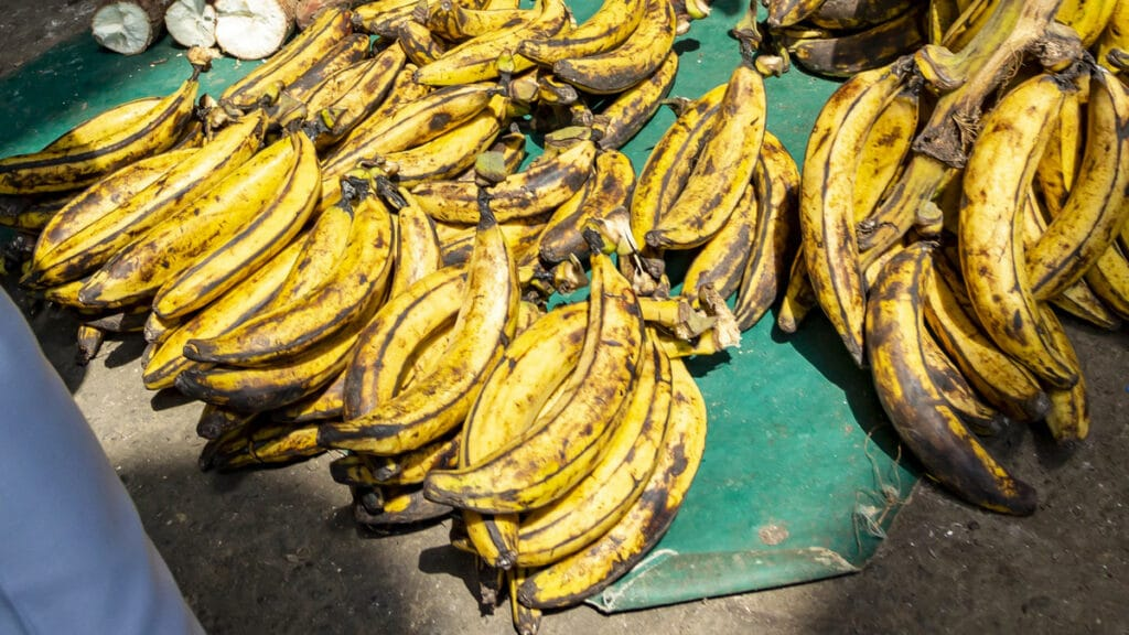 How to tell when plantains are ripe