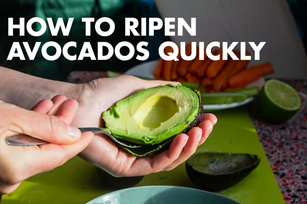 How to Ripen Avocados: Best Methods to Use